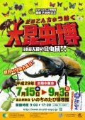 特別展「大昆虫博」
