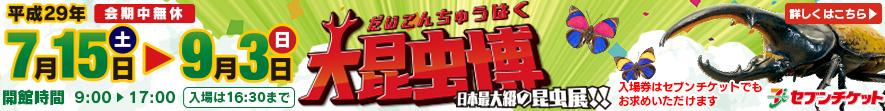 大昆虫博-日本最大級の昆虫展!!
